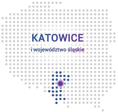 Kurs Excel Katowice