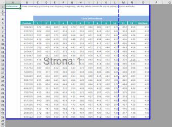 drukowanie Excela